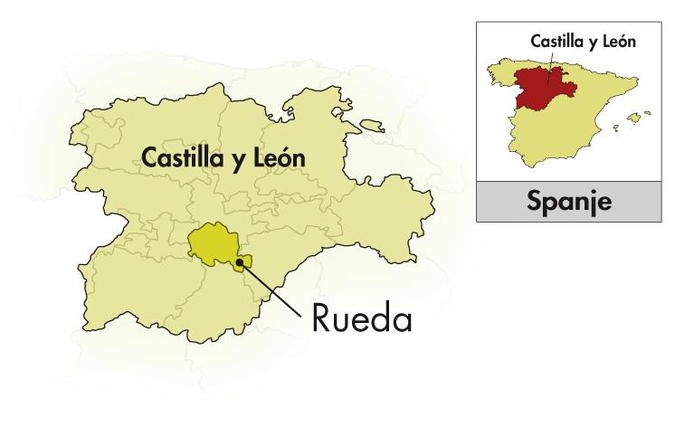 12 flessen Castelo de Medina Rueda Verdejo plus 1 Magnum extra