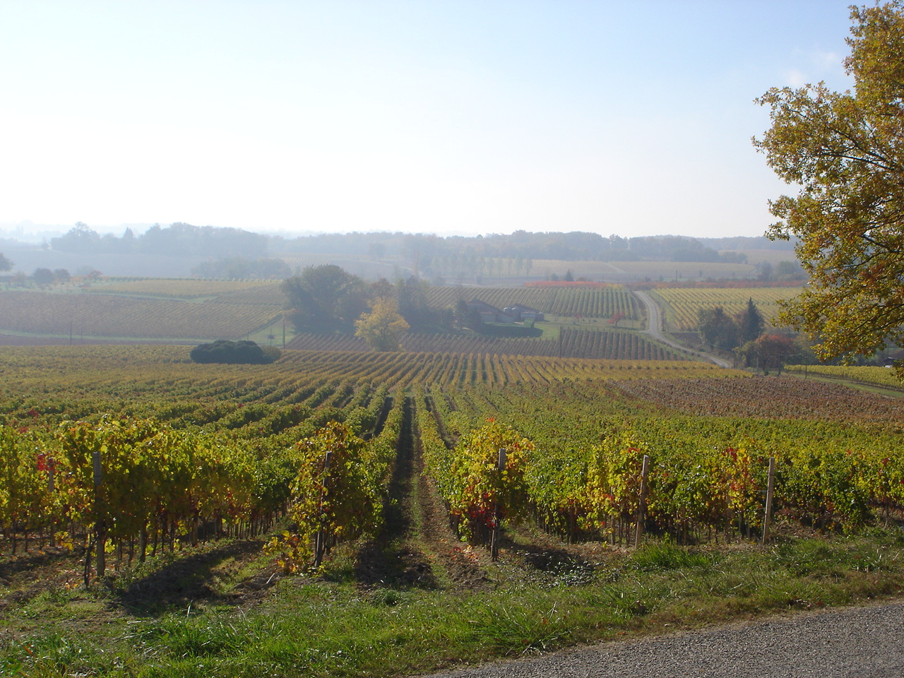 Domaine Chiroulet